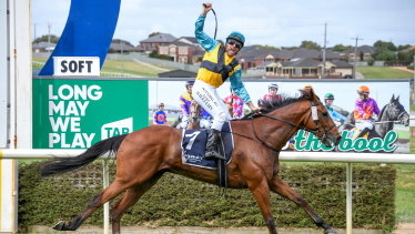 Count Zero ridden by Luke Williams wins the Jericho Cup at Warrnambool Racecourse on Sunday.