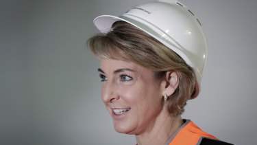 Minister for Jobs and Innovation Michaelia Cash