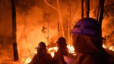 Volunteers work through the night  to prevent a flare-up from crossing the Kings Highway between Nelligen and Batemans Bay  in early January.