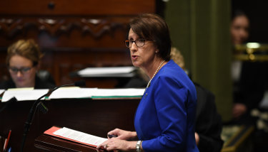 Leslie Williams speaks during amendments to the introduction to the Reproductive Healthcare Reform Bill 2019.