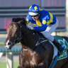 Dawn Passage wins at Doomben on Saturday to secure a place in next Saturday's Stradbroke Handicap.
