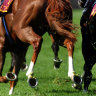 Banks' spring racing season begins with horse-trading on rates