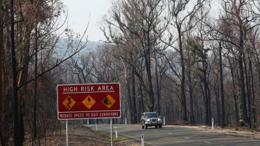 Bushfire damage is seen near Tambo Crossing beside the Great Alpine road in the Victorian high country.