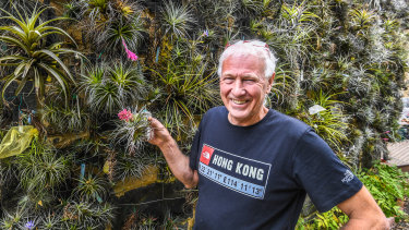 Lloyd Godman with some of his air plants, or tillandsias, in St Andrews.
