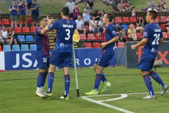 Newcastle celebrates Dimi Petratos' goal.