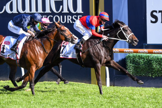 The Chris Waller-trained Verry Elleegant holds off Anthony Van Dyck to win the Caulfield Cup.