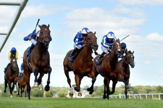 Aspetar (middle) running second at Sandown Park Racecourse in England in July.