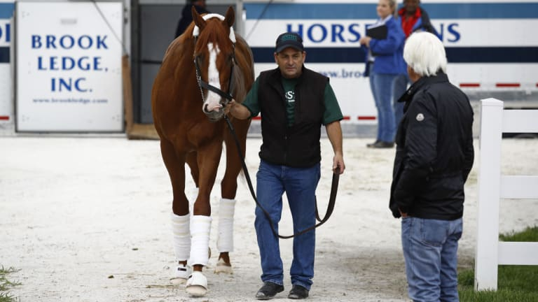 Doing dad proud: Trainer Bob Baffert, right, watches as Kentucky Derby winner Justify arrives at Pimlico Race Course.