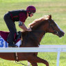 Il Paradiso prepares for return to track