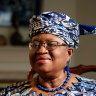'Perfect chief': Who is Dr Ngozi, the woman charged with fixing the WTO?