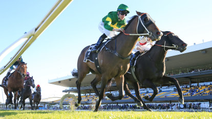 'Haven't felt like this since Black Caviar': Ole Kirk follows family tradition in Golden Rose