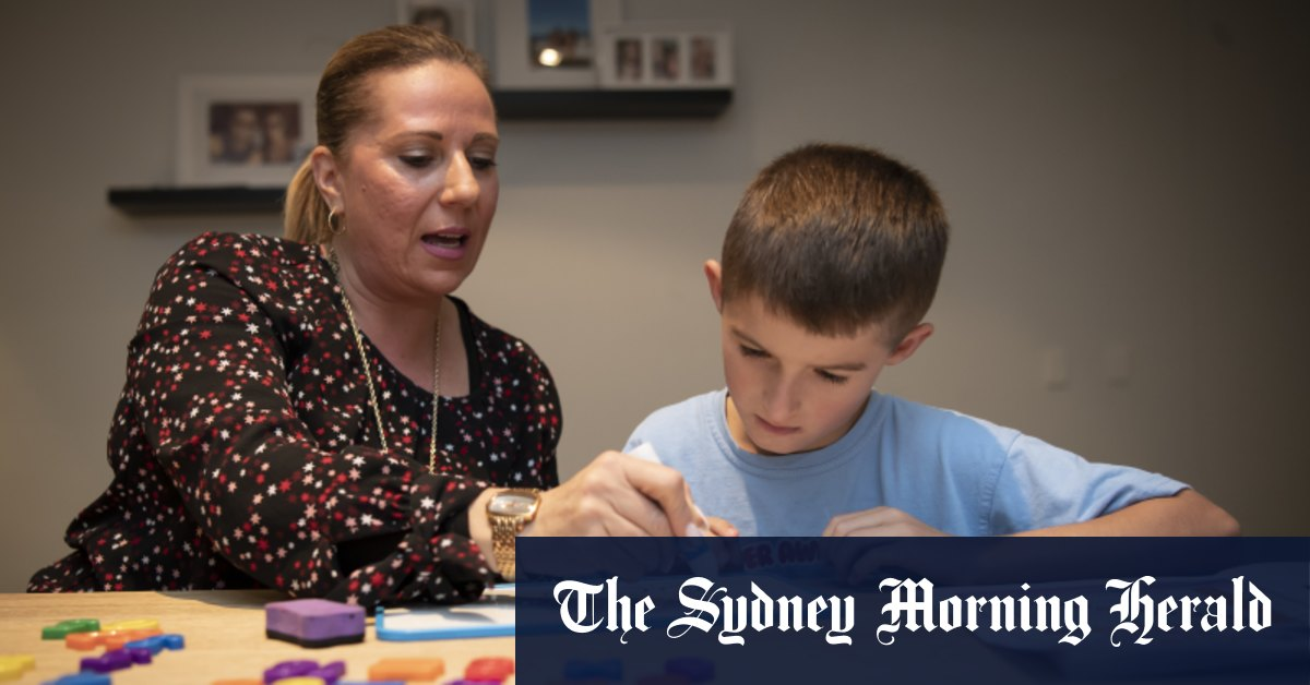 'Confused and confusing': Maths experts say curriculum is faddish and shallow – The Sydney Morning Herald