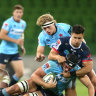 Waratahs stand up to be counted when it counts most