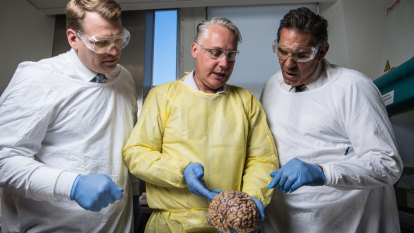 Rugby league rocked by first proof of former players with CTE