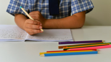 """Home schooling due to COVID could leave a """"lost generation"""" of young people, the OECD has warned."""