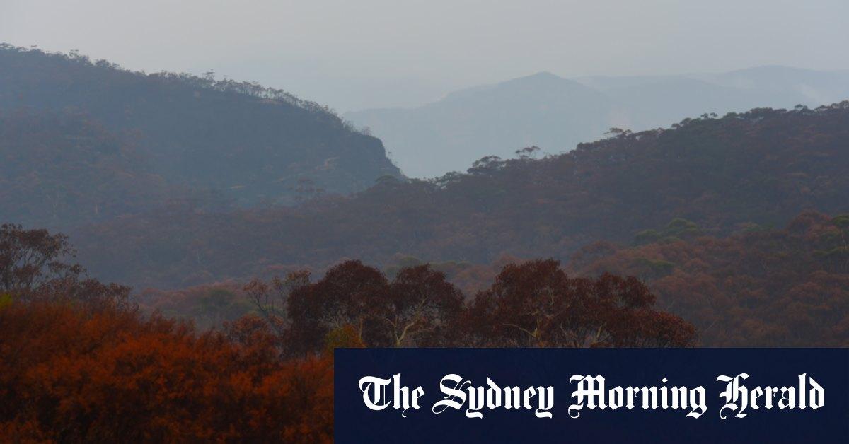 Two bushwalkers rescued in Blue Mountains amid heavy rain – Sydney Morning Herald