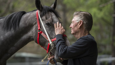 Les Bridge with Classique Legend ahead of The Everest at Randwick on Saturday