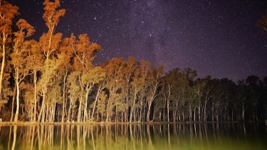 Calls are growing for a royal commission into the Murray-Darling basin.