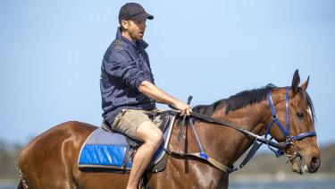 Leading Canberra trainer Matt Dale.