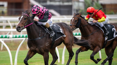 Rothfire proved too good in the Champagne Classic at Eagle Farm on Saturday.
