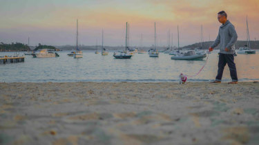 Daniel Lay takes his cat for a walk on Little Manly Beach during an overnight stay at Manly.
