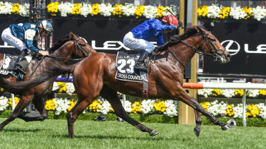 Cross Counter wins the Melbourne Cup.