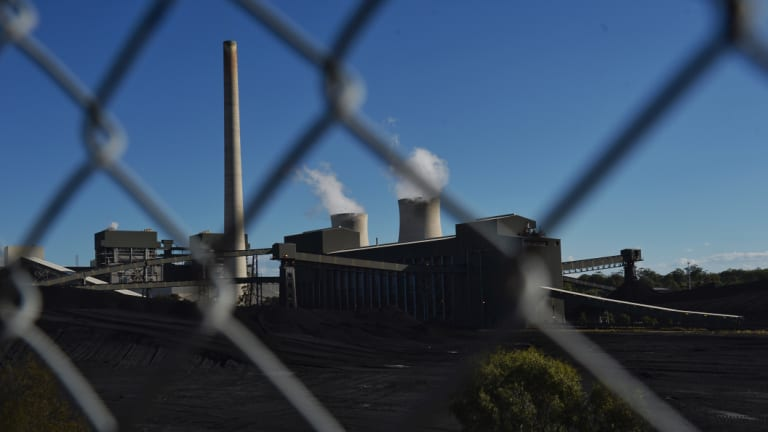 AGL's Bayswater Power Station in the NSW Hunter Valley.