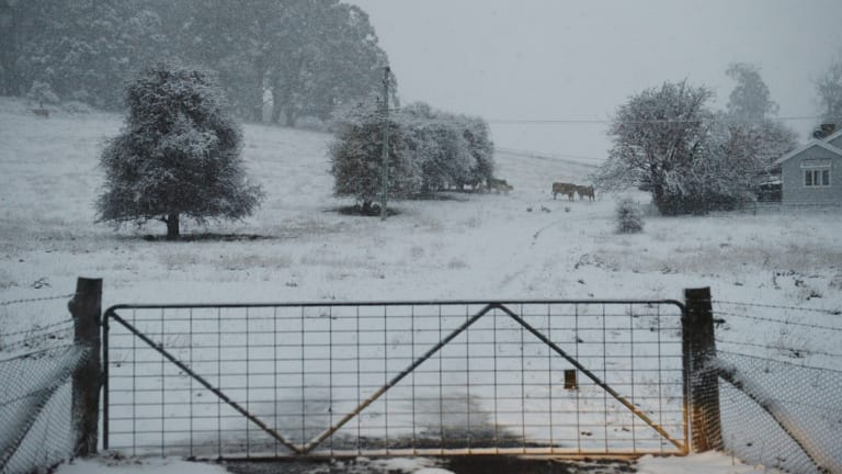 Snow fell south of Oberon around Black Springs on Friday morning.