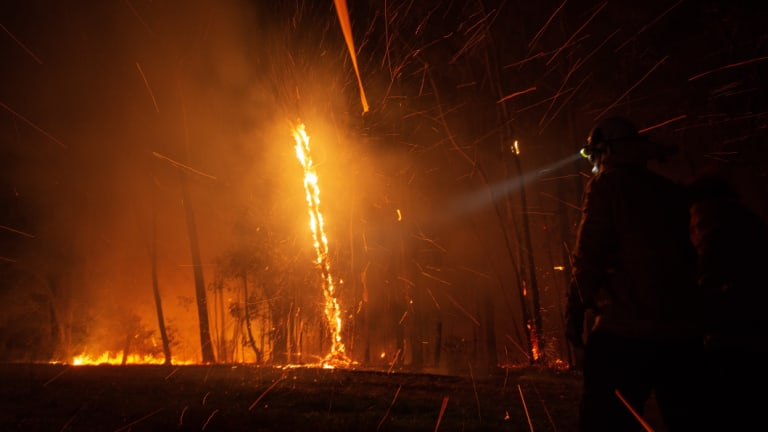 Firefighters have worked overnight on 79 bushfires across NSW, with 32 burning uncontained.