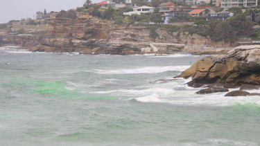 Bright green dye is used to identify a rip at Tamarama beach.