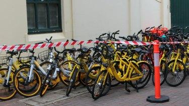 Bikes seized for impounding at Bondi on Monday.