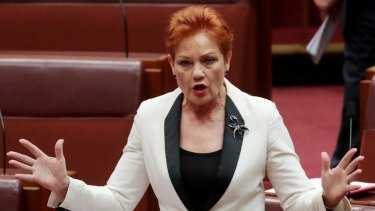 Protesters will voice their opposition to One Nation leader Pauline Hanson and her party.
