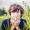 Why do some people get hay fever and what can they do about it?