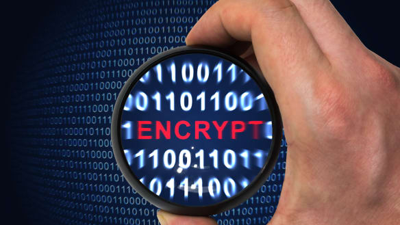 'Negative for tech sector': Fitch slams new encryption laws