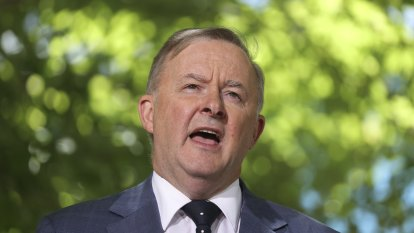 No more retiree tax: Anthony Albanese dumps franking credits policy