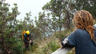 Local searchers abseil cliffs in Cape Byron looking for clues into the disappearance of Theo Hayez.