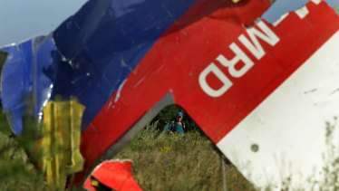 A woman looks at the debris from flight MH17 at the crash site in eastern Ukraine.