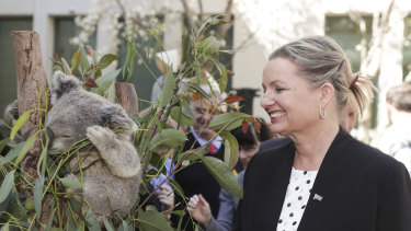 Environment Minister Sussan Ley has approved a controversial plan to expand a quarry on NSW's Mid North Coast.