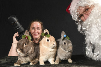 Behaving themselves: Photographer Julie Hansen poses with rabbits Lady, Marco and Cinnamon Buns while Santa (Jo Harris) looks on.