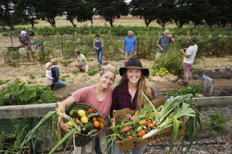 Lots for dinner: Kitty Walker (left),  Kelly Caldwell and fellow members of The Dairy vegetable garden at Marcus Hill, near Ocean Grove.