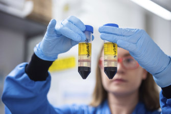 A researcher works on the coronavirus vaccine developed by AstraZeneca and Oxford University.