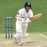 David Warner scores Shield century for NSW at Gabba