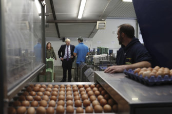 British PM Boris Johnson inspects the egg operation during his visit to rally support for his farming plans post-Brexit.