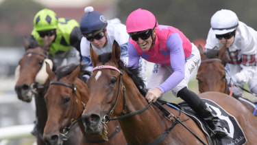 Back again: Kim Waugh is hoping Newsfan can live up to her black type potential.