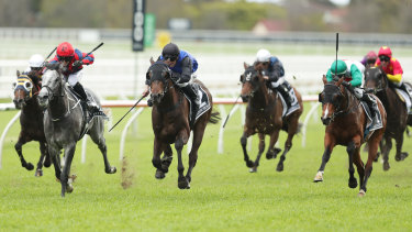 Castelvecchio (right, green cap) again showed his class despite defeat to Shadow Hero in the Spring Champion Stakes.