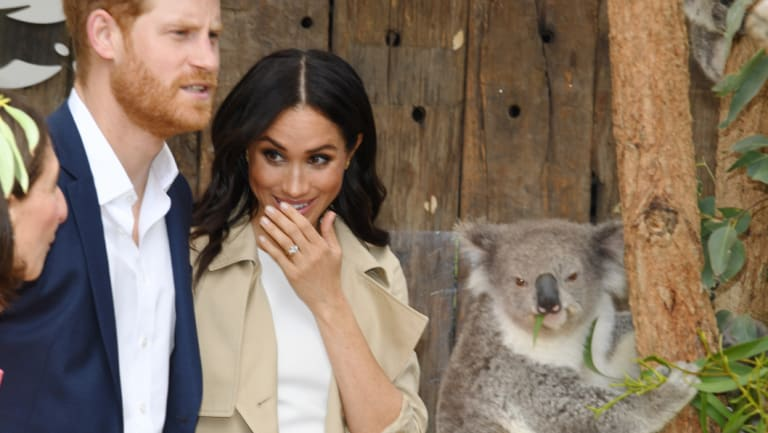 Harry and Meghan meet koalas at Taronga Zoo.