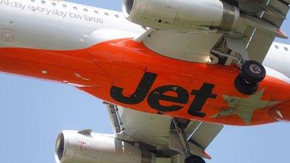 Turtle halts Jetstar flight take-off at Gold Coast
