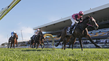 Rothfire races into Golden Rose favouritism in the  Run To The Roses.