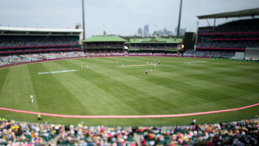 The NSW government has increased the crowd capacity of the Big Bash final at the SCG.
