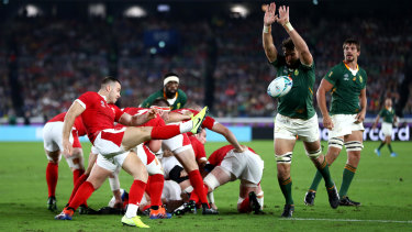 South Africa will face England in the Rugby World Cup final after defeating Wales.